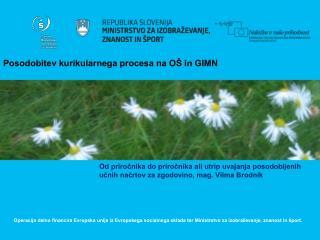 Posodobitev kurikularnega procesa na OŠ in GIMN