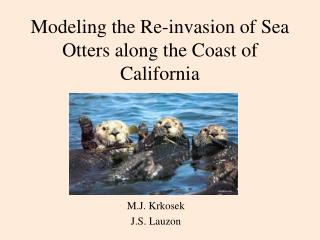 Modeling the Re-invasion of Sea Otters along the Coast of California