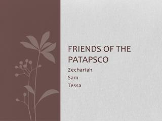 Friends of the Patapsco