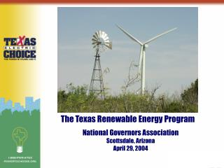The Texas Renewable Energy Program