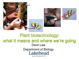 Plant biotechnology:  what it means and where we're going