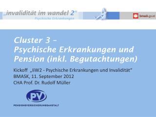 Cluster 3 –  Psychische Erkrankungen und Pension (inkl. Begutachtungen)