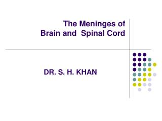 The Meninges of  Brain and  Spinal Cord