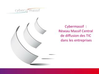 Cybermassif  :  Réseau Massif Central  de diffusion des TIC  dans les entreprises