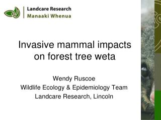 Invasive mammal impacts on forest tree weta