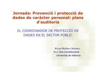 Jornada: Prevenci  i protecci  de dades de car cter personal: plans d auditoria  EL COORDINADOR DE PROTECCI  DE DADES EN