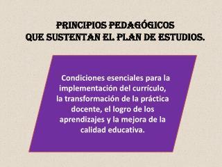 PRINCIPIOS PEDAGÓGICOS  QUE SUSTENTAN EL PLAN DE ESTUDIOS.