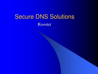 Secure DNS Solutions