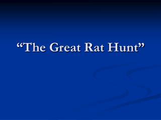 �The Great Rat Hunt�