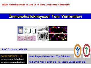 İmmunohistokimyasal  Tanı Yöntemleri