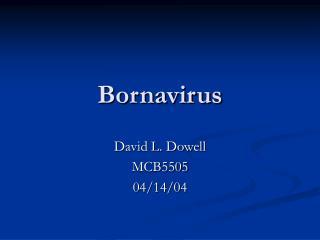 Bornavirus