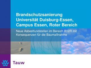 Brandschutzsanierung Universität Duisburg-Essen, Campus Essen, Roter Bereich