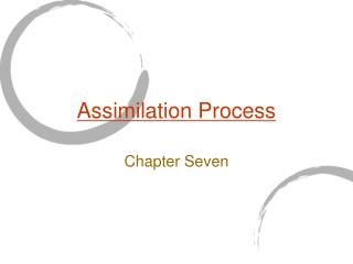 Assimilation Process