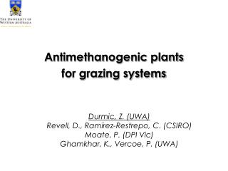 Antimethanogenic plants  for grazing systems
