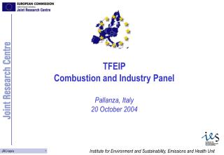 TFEIP Combustion and Industry Panel Pallanza, Italy  20 October 2004