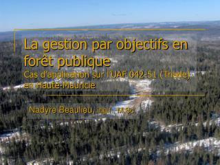 Nadyre Beaulieu,  ing.f., M.Sc.