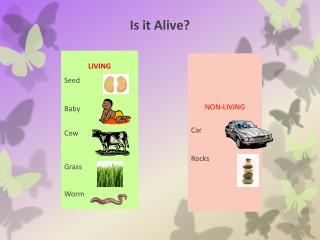 Is it Alive?