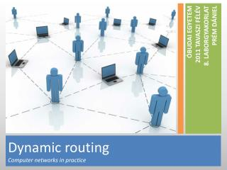 Dynamic routing Computer  networks in practice