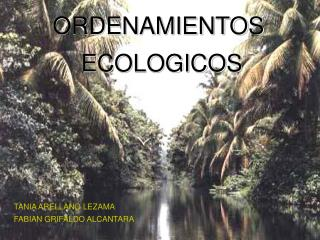 ORDENAMIENTOS  ECOLOGICOS