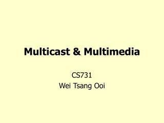 Multicast & Multimedia