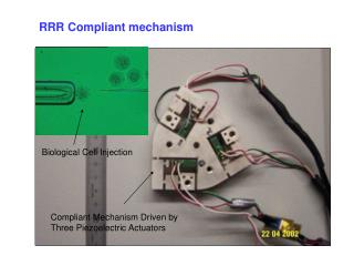 RRR Compliant mechanism