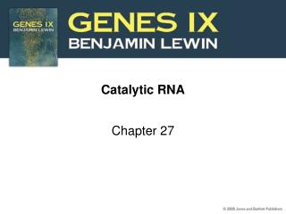 Catalytic RNA