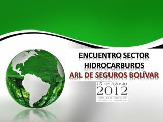 ENCUENTRO  SECTOR HIDROCARBUROS  ARL DE SEGUROS BOLÍVAR