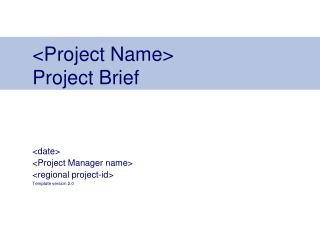 <Project Name> Project Brief