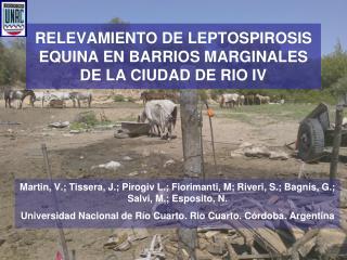 RELEVAMIENTO DE LEPTOSPIROSIS EQUINA EN BARRIOS MARGINALES DE LA CIUDAD DE RIO IV