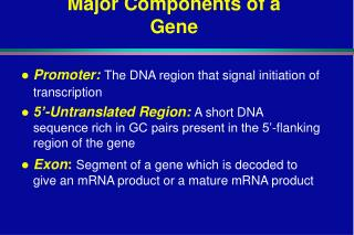 Major Components of a Gene