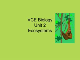 VCE Biology Unit 2 Ecosystems
