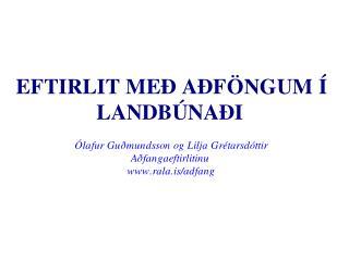 Adfangaeftirlitid-RNF-00