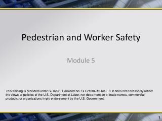 Pedestrian and Worker Safety