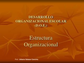 DESARROLLO ORGANIZACIONAL ESCOLAR (D.O.E.) Estructura Organizacional