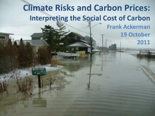 Climate Risks and Carbon Prices: Interpreting the Social Cost of Carbon
