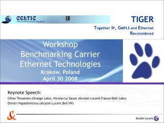 Workshop  Benchmarking Carrier Ethernet Technologies Krakow, Poland April 30 2008