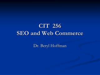 CIT  256 SEO and Web Commerce
