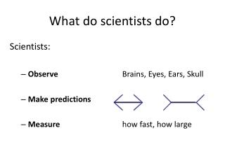 What do scientists do?