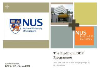 The Biz- Engin  DDP Programme