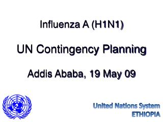 Influenza A (H1N1) UN Contingency Planning Addis Ababa, 19 May 09