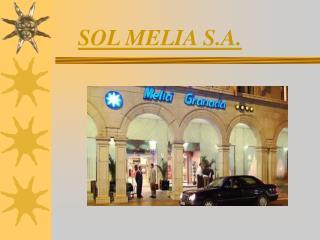 SOL MELIA S.A.
