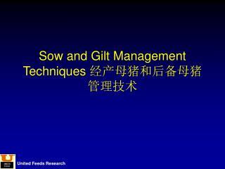 Sow and Gilt Management Techniques  经产母猪和后备母猪管理技术