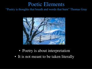 "Poetic Elements  ""Poetry is thoughts that breath and words that burn"" Thomas Gray"