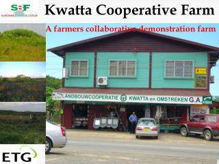 Kwatta Cooperative Farm  A farmers collaborative demonstration farm