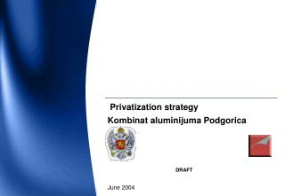 Privatization strategy Kombinat aluminijuma Podgorica DRAFT Jun e  2004