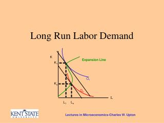 Long Run Labor Demand
