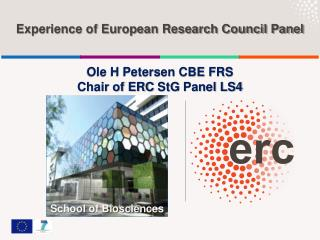 Experience of European Research Council Panel