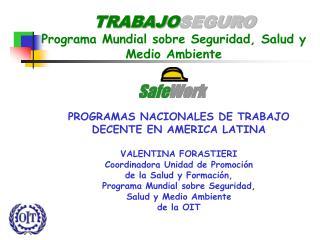 TRABAJO SEGURO Programa Mundial sobre Seguridad, Salud y Medio Ambiente