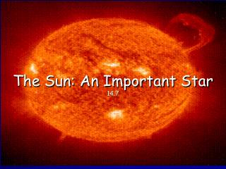 The Sun: An Important Star 14.7