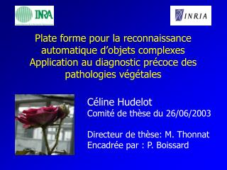 Céline Hudelot Comité de thèse du 26/06/2003 Directeur de thèse: M. Thonnat